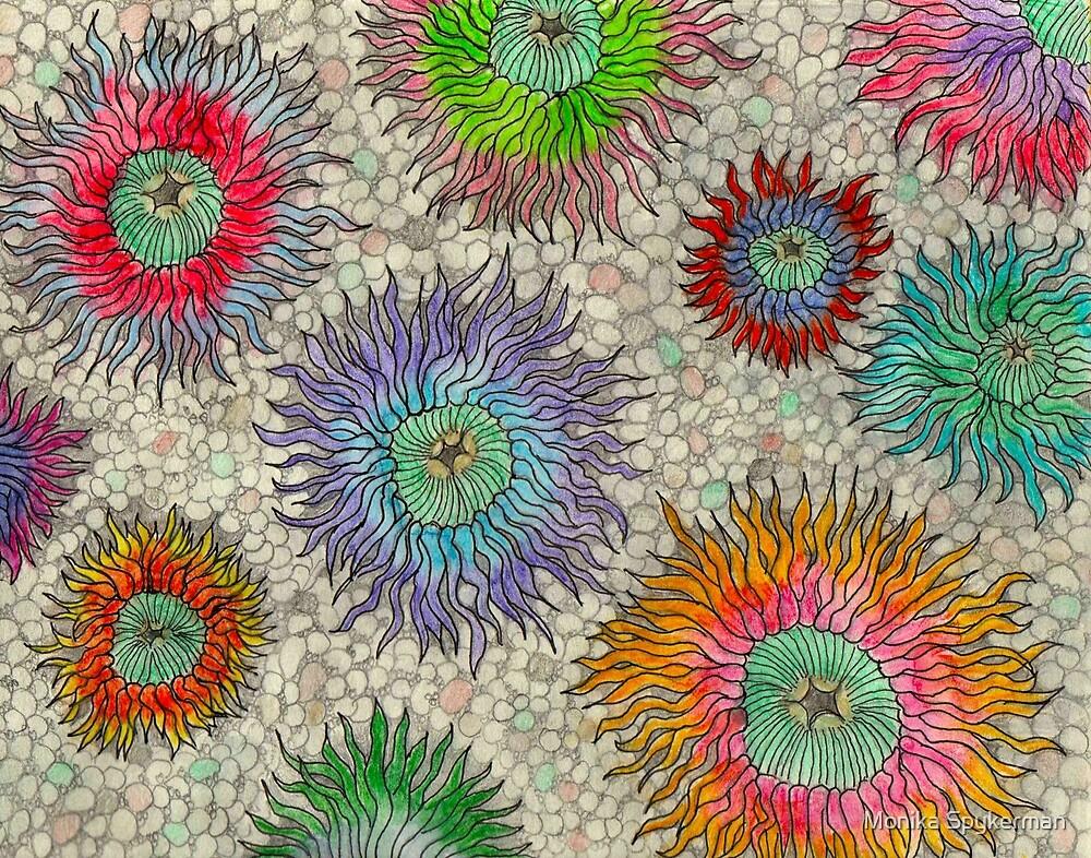 Sea Anemones by Monika Spykerman