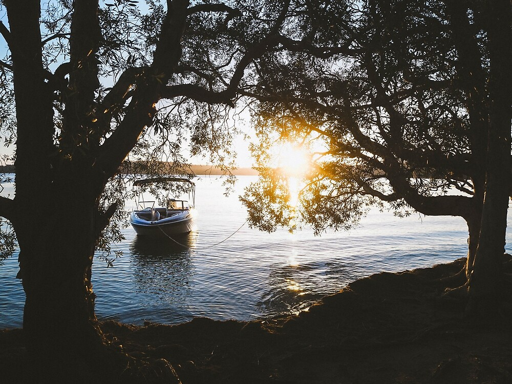 Myall Lakes by Nic Wilson