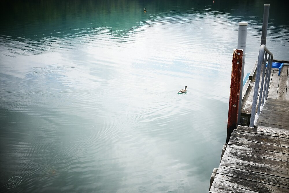 Duck and Dock by MuellerImages