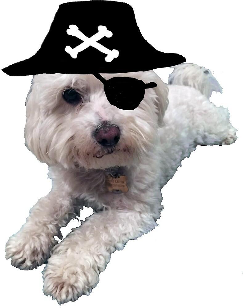 Rachel's Pirate Dog by demaxicon