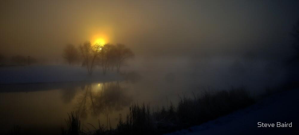 Foggy Winter Morning by Steve Baird