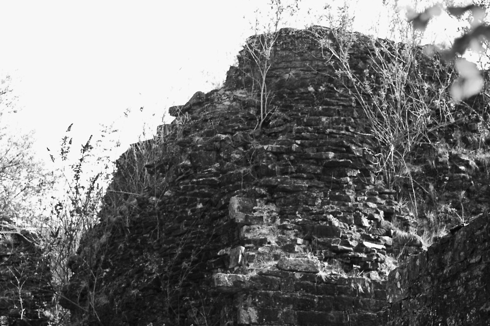 Ruins in black and white by franceslewis