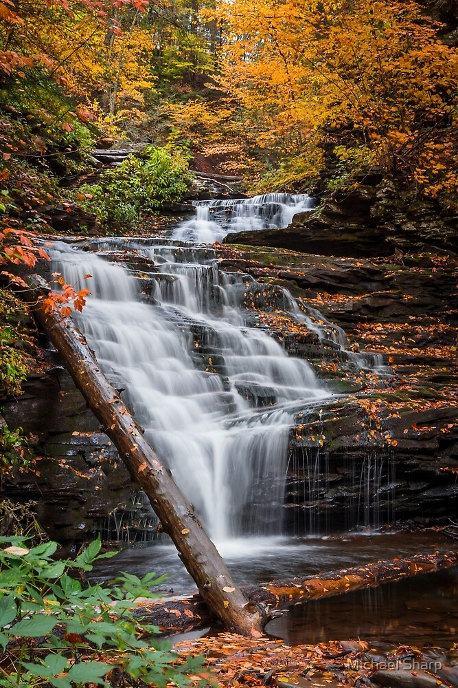 Fall Waterfall Photo by Michael Sharp