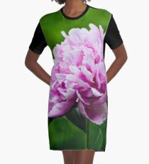 Showy Pink Pedals Graphic T-Shirt Dress