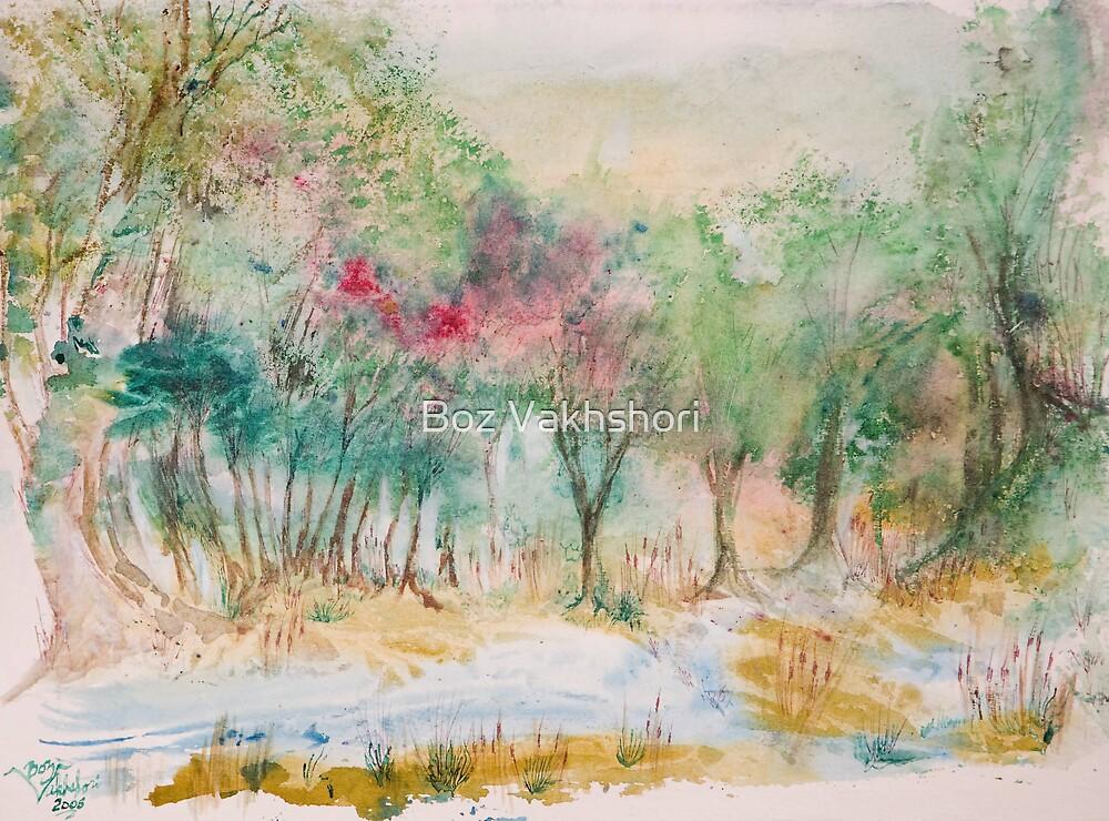 Sequioa Park by Boz Vakhshori