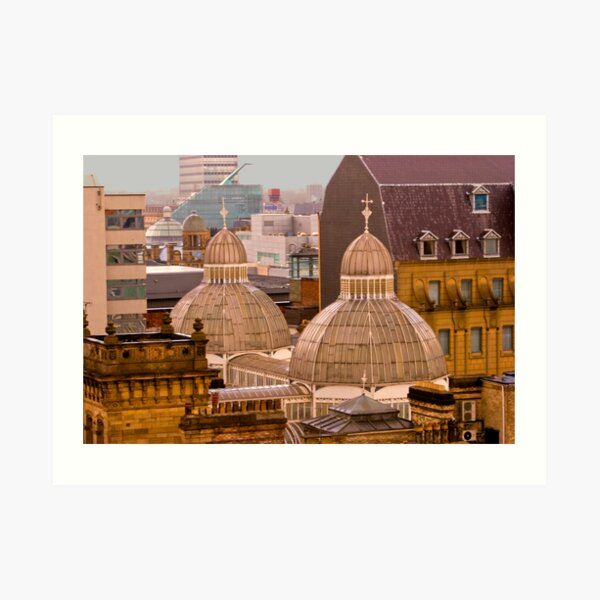 Barton Arcade roof, Manchester city centre Art Print