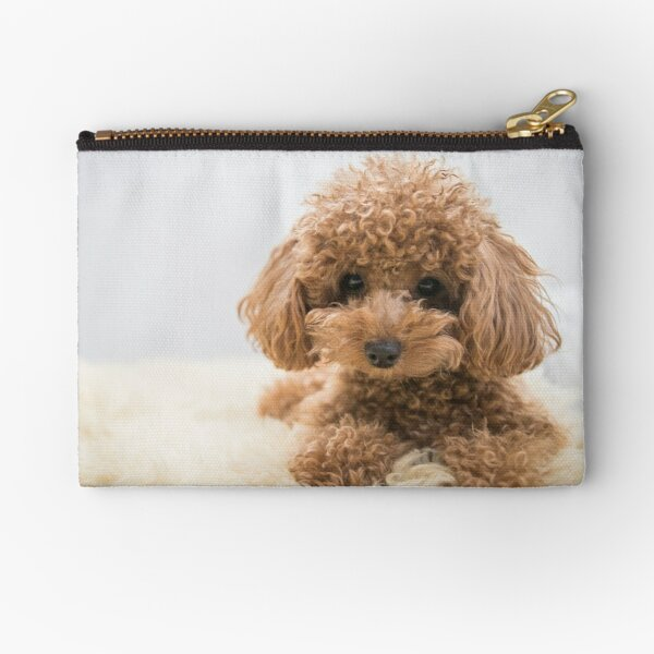 Curly-Haired Toy Poodle Zipper Pouch