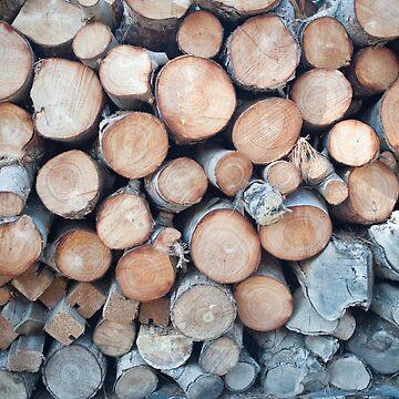 Firewood background by NoeliaUroz