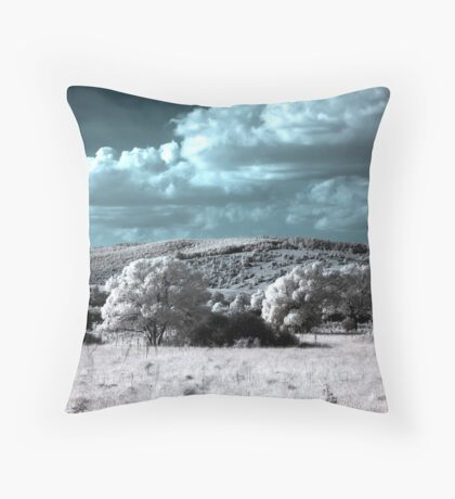 Expulsion from Heaven? (Infrared) Throw Pillow