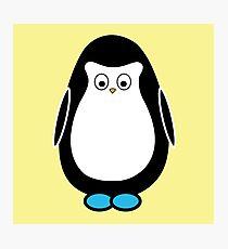 Hugo the penguin Photographic Print