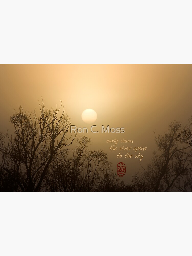 Early Dawn by ronmoss