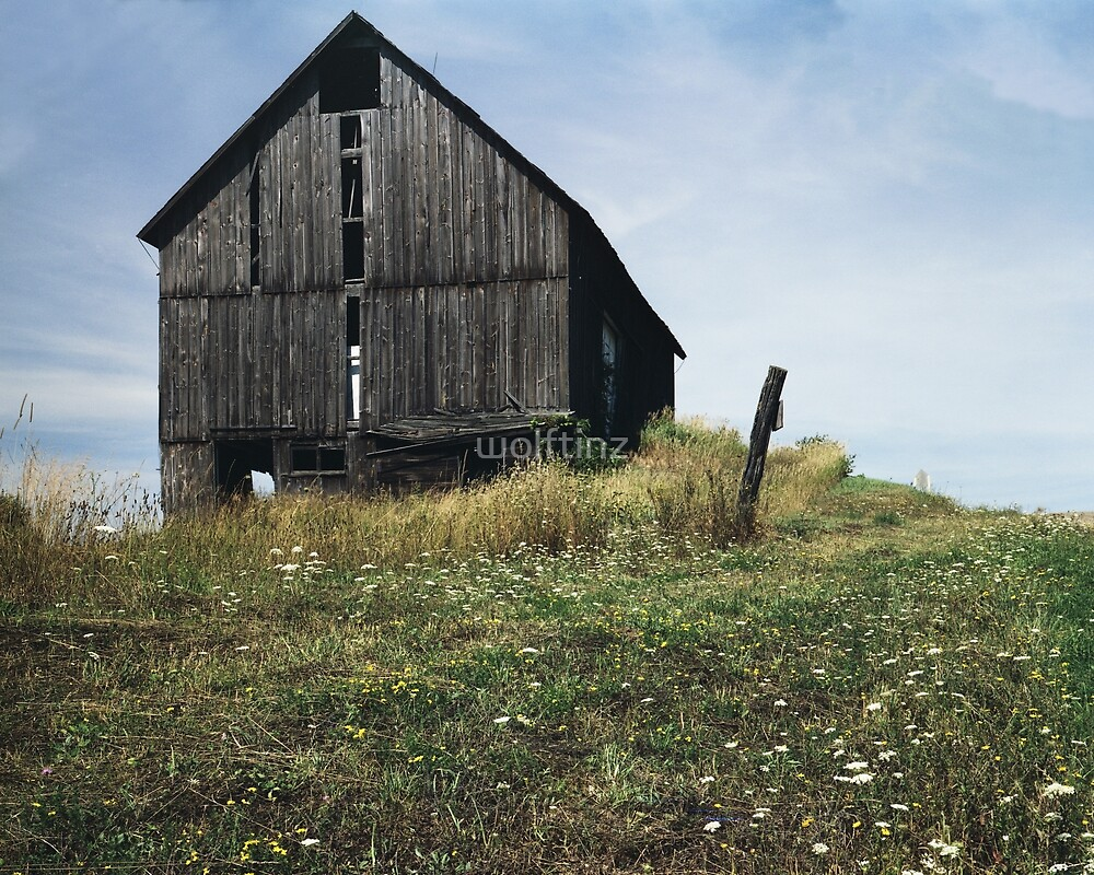 Barn in Spring Dansville, NY by wolftinz