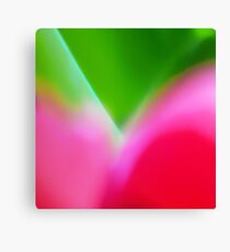 Colors of Spring 1 Canvas Print