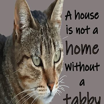 A House Is Not A home Without A Tabby Cat by taiche