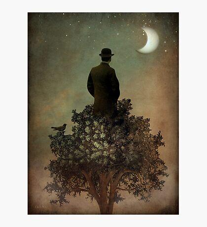Man in tree Photographic Print
