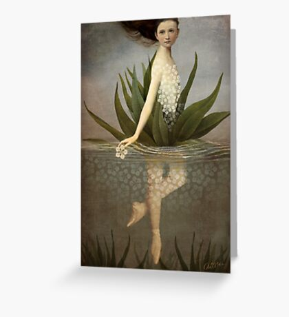Waterlily Greeting Card