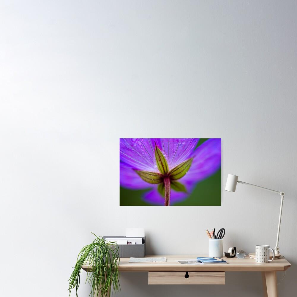 Unknown Flower Poster