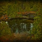 Narcissus Mirror by egold