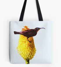 Amethyst Sunbird on Flowering Red Hot Poker Tote Bag