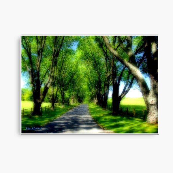 Highlands Highway Canvas Print