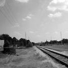 The Tracks by Kara Salame