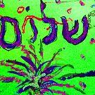 Shalom Celebrate Peace by hdettman