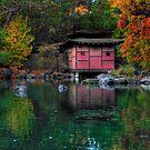 Japanese Garden Walk by Skye24Blue