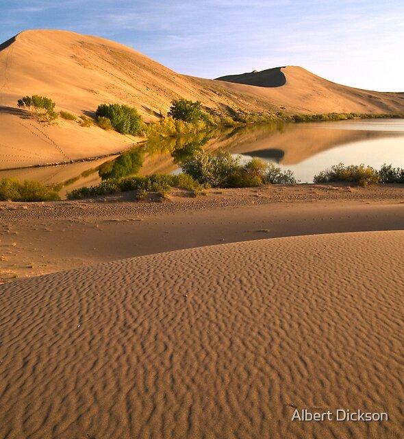 Idaho Oasis, Bruneau Dunes by Albert Dickson
