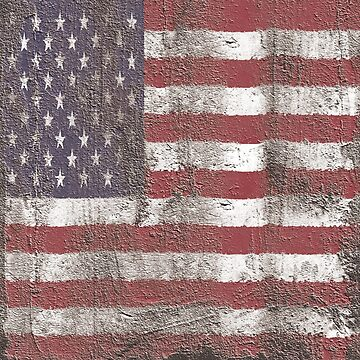 Distressed American Flag by Rajee