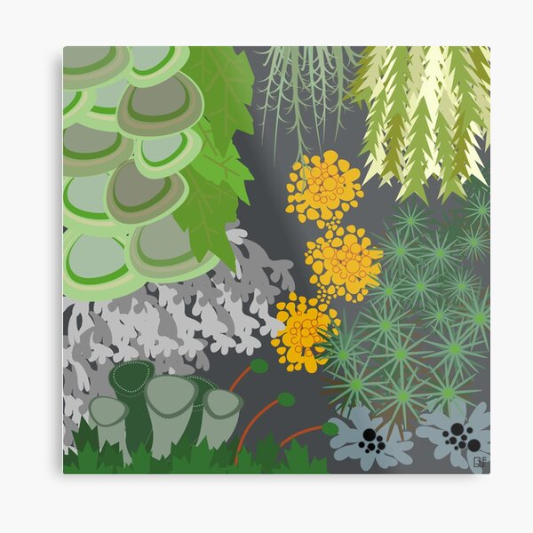 Tettegouche Moss and Lichen Collage Metal Print
