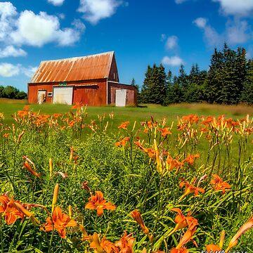 Old Barn in Cape Breton #2 by kenmo