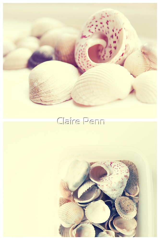 One cannot collect all the beautiful shells on the beach... by Claire Penn