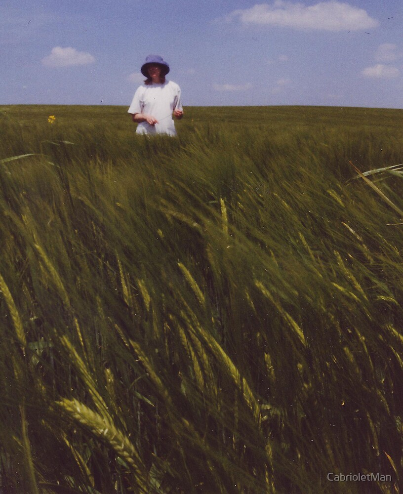 Girl in a Cornfield by CabrioletMan