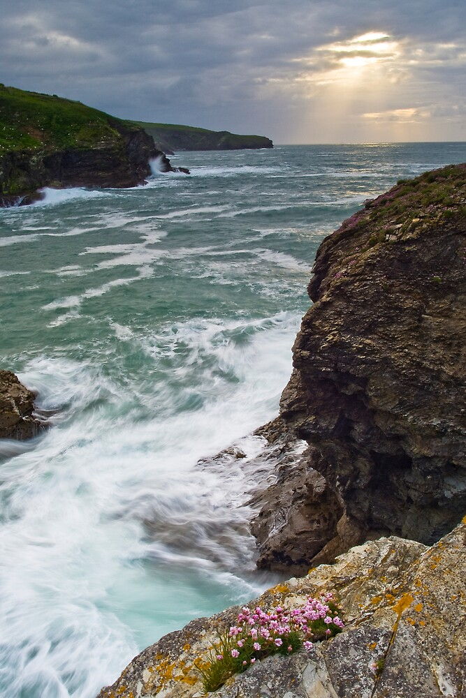Port Gaverne Outlook by David Wilkins