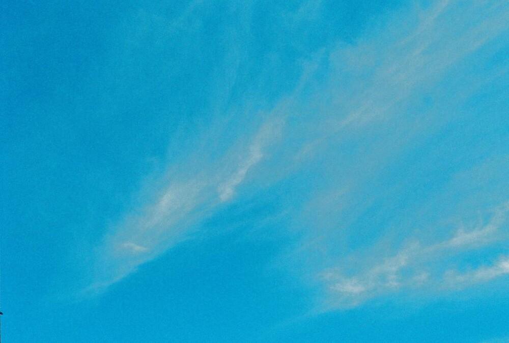 The Clouds by Tim Laskovich