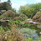 Sizergh Gardens  by CreativeEm