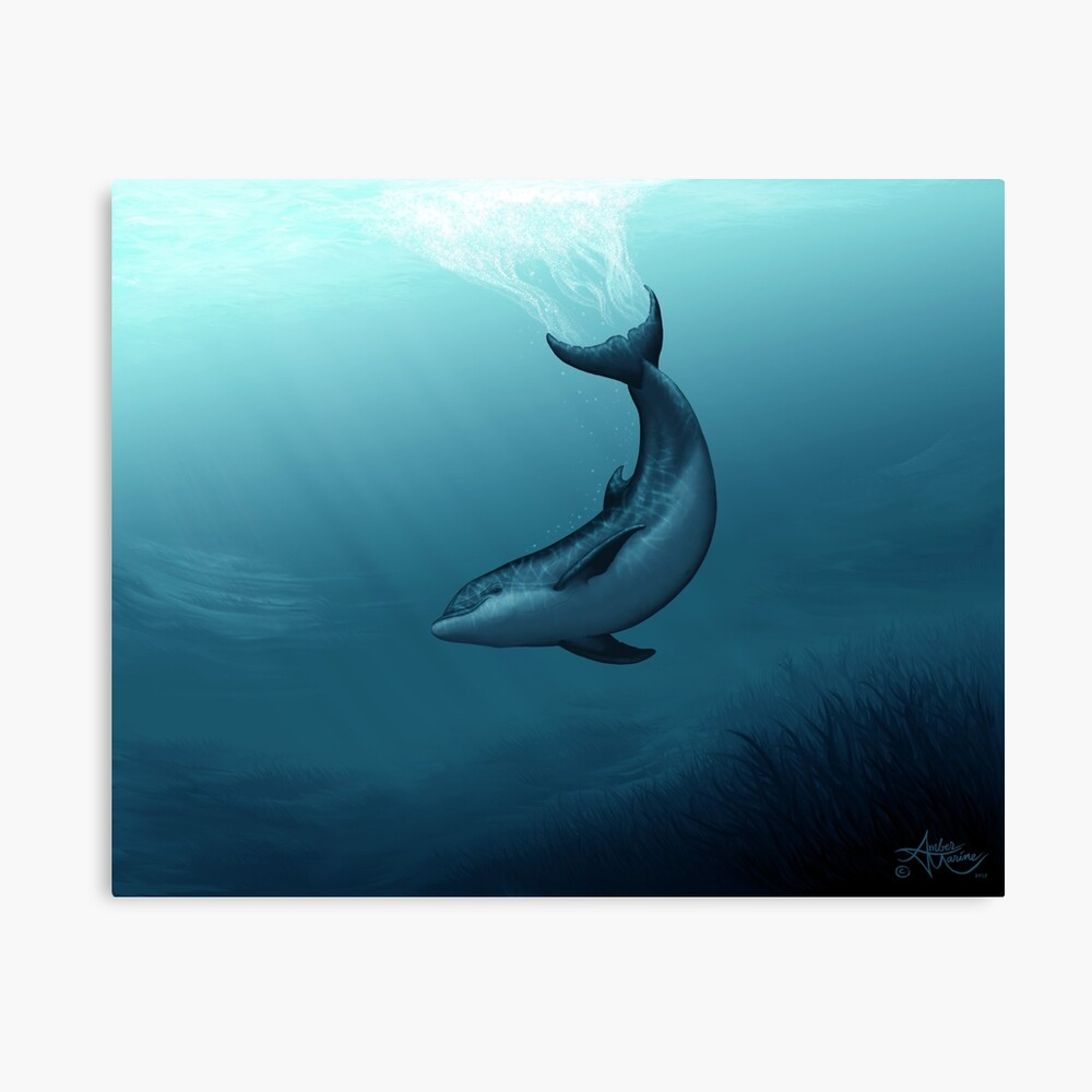 """""""Siren of the Blue Lagoon"""" by Amber Marine ~ dolphin painting, art © 2015 Canvas Print"""