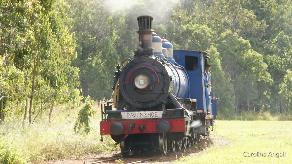 Ravenshoe Steam Train Series - Turning the Locomotive by Caroline Angell