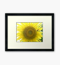 Go Check It Out Framed Print