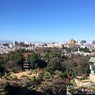 Chinzan-so Garden, December 2014 : Photo Friday at meauxtaku.com by merimeaux