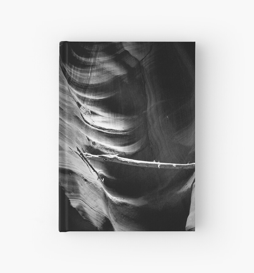 Captured ~ Black & White by Lucinda Walter