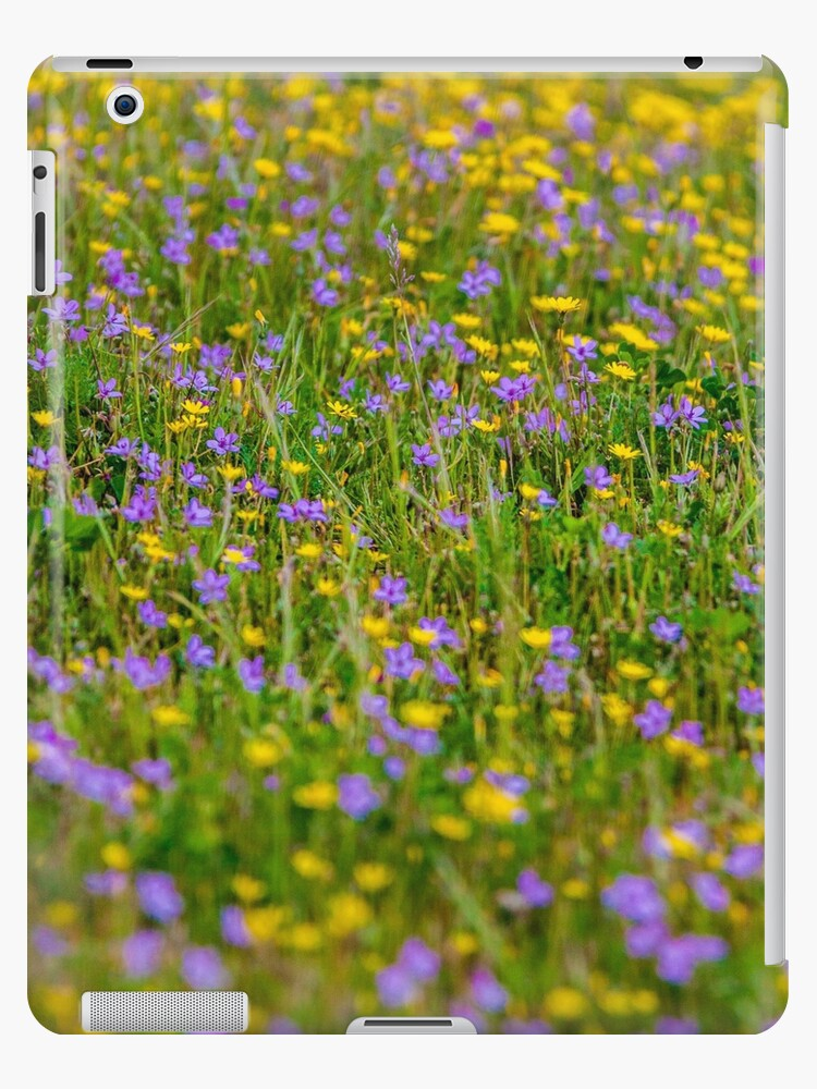 Flowers Flowers by juancalop