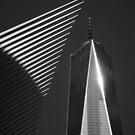 1 WTC by Denis Charbonnier