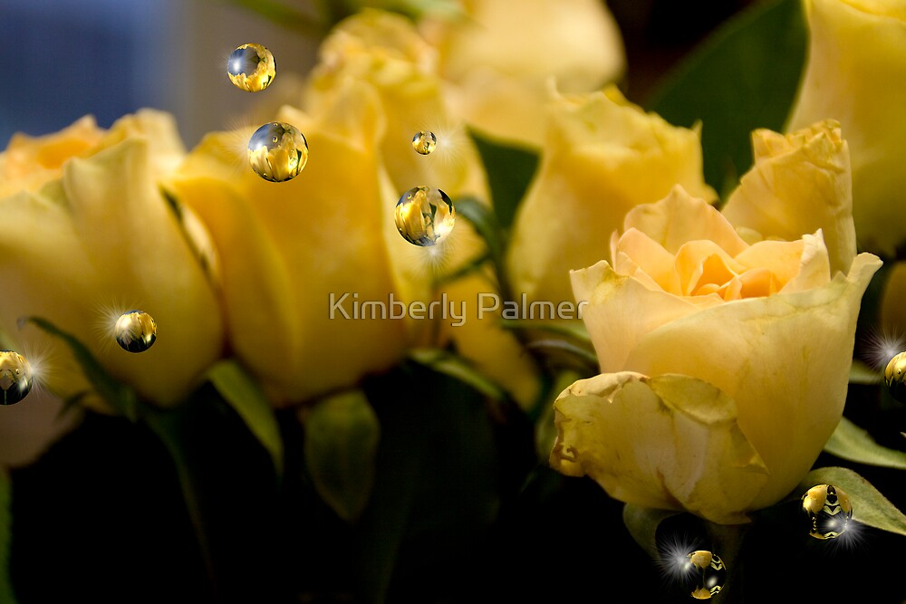 Yellow Roses by Kimberly Palmer