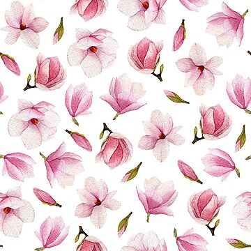 Watercolor magnolia flowers by Mesori