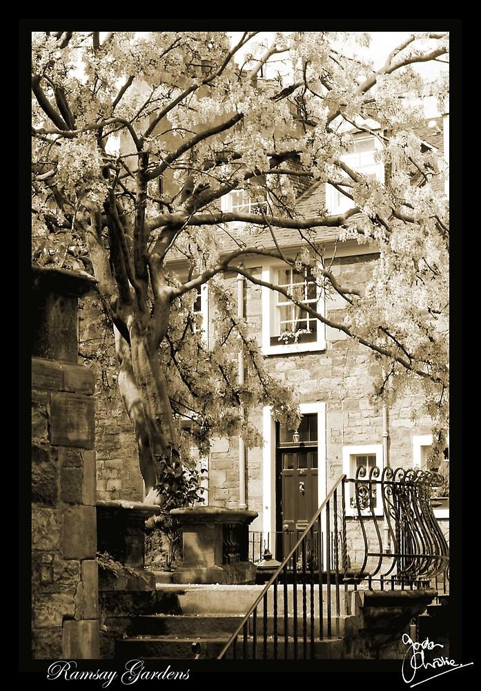 Ramsay Gardens, Edinburgh by milton