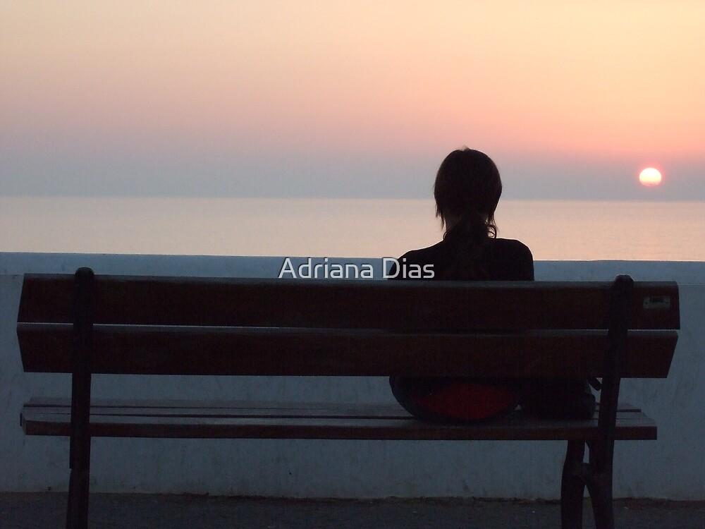 Sillent Dialog by Adriana Dias