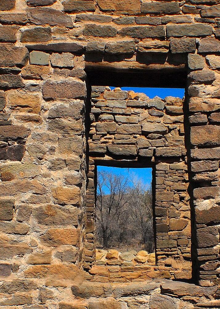 Ruin Windows by Cynde143