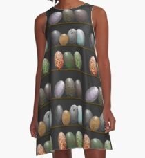 Shelf full of Dragon eggs A-Line Dress