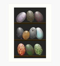 Shelf full of Dragon eggs Art Print
